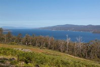 Picture of Lot 2 Cygnet Coast Road, Petcheys Bay