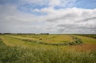 Picture of Sale Lt1 Waltowa Road, Meningie