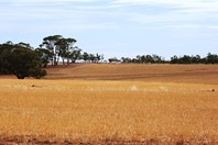 Picture of 899 Grass Valley North Rd, Northam