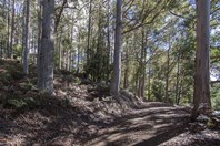 Picture of Lot 2 Bakers Creek Trail, Lucaston