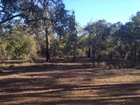 Picture of 3820 Phillips Road, Mahogany Creek