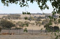 Picture of 376 Spring Plains Road, Heathcote