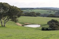 Picture of 2265 Playford Highway, Cygnet River