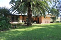 Picture of 312 Thompsons Creek Road, Scone