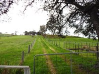 Picture of The Valley Parawa Road, Torrens Vale