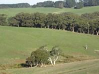 Picture of 710 Springmount Road, Hindmarsh Tiers