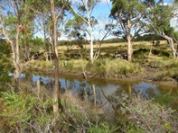 Picture of Lot 1 Hurdle Road, Saltwater River