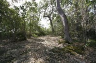 Picture of Quenda Drive, Northcliffe