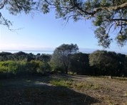 Picture of 183 Gardners Road, Greens Beach