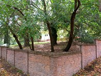 Picture of 5 Surrey Street, Hawthorndene