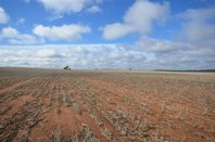 Picture of Sec 4 Rosy Pine Bore, Pinnaroo