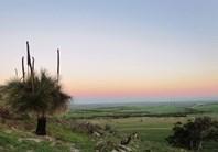 Picture of 1494 Chapman Valley Road, Narra Tarra