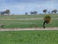 Picture of 10240 Hills Road, Cunderdin
