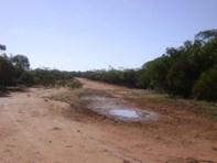 Picture of Koorda-Bullfinch Road, Nungarin