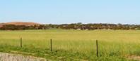 Picture of 15353 Goldfields Road, Merredin