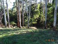 Picture of . Tippetts Road, Mount Hicks