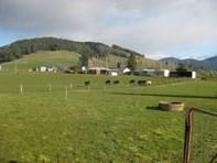 Picture of 978 Gunns Plains Road, Gunns Plains