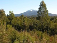 Picture of 7736 Huon Highway, Strathblane