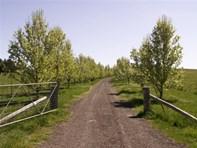 Picture of Taralga Road, Goulburn