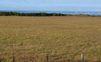 Picture of Lot 7 Eight Mile Creek Road, Racecourse Bay