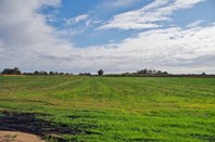 Picture of 2- 4 Bookmark Ave, Renmark
