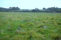 Picture of Lot 1 Harewood Road, Scotsdale