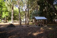 Picture of Lot 132 Karri Lane, Quinninup