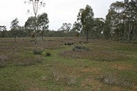 Picture of Lot 240 Old Glenorchy Road, Stawell