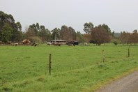 Picture of 178 Roger River Road, Roger River