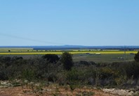 Picture of Lot 556 Godenia Way, Hopetoun