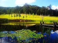Picture of Laguna