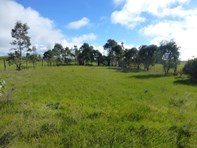 Picture of * Various Allotments, Terowie