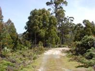 Picture of L1 Kelletts Road (Access from Dam RD), Sloping Main