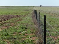 Picture of Lot 1 Pollard, Wongan Hills