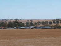 Picture of 1303 Meckering Rd, Goomalling