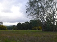 Picture of Lot 201 Steere Road, Allanson