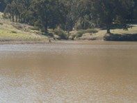 "Picture of Lot 3 ""Hillandale"", Nannup"
