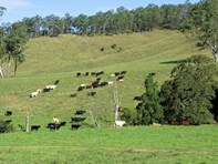"Picture of 583 ""The Highlands"" Wallaringa Road, Dungog"