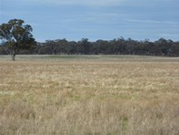 Picture of Stawell
