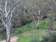 Picture of 93a Taylor Road, Humbug Scrub