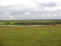 Picture of 1439 Swedes Flat Road, Mundulla West