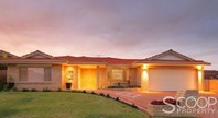 Picture of 63 Amity Boulevard, Coogee