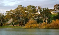 Picture of 6 Lookout Drive, Paringa