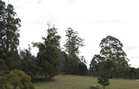 Picture of Lot 5/1103 Nook Road, Acacia Hills
