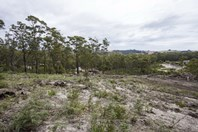 Picture of Lot/6 Woodland Grove, Tugrah