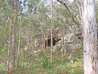 "Picture of ""The Boulders"" 136 Blackwattle Track, Laguna"