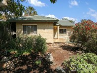 Picture of 101 Archibald Street, Willagee