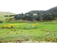 Picture of 415 Cockatoo Gully Road, Elderslie