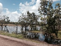 Picture of 550 Reedbeds  Road, Darwin River