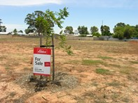 Picture of Lot 15 Fantasia Drive, Angle Vale